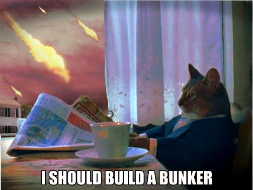 http://www.comediva.com/images/2013/CatBunkerMeme.jpg