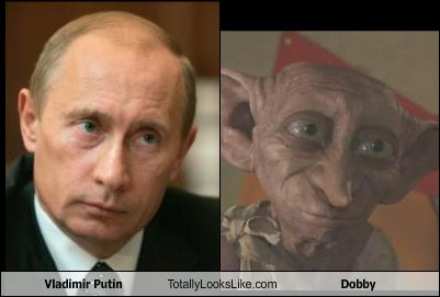 dobbyputin1217 - Putin it straight - Facts and Trivia