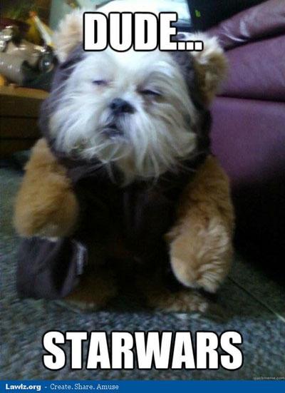 Dog meme star wars