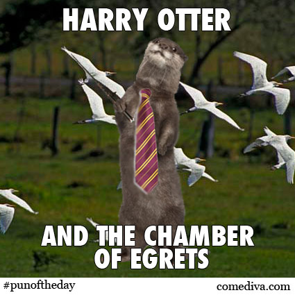 Pun of the Day Harry Potter Otter