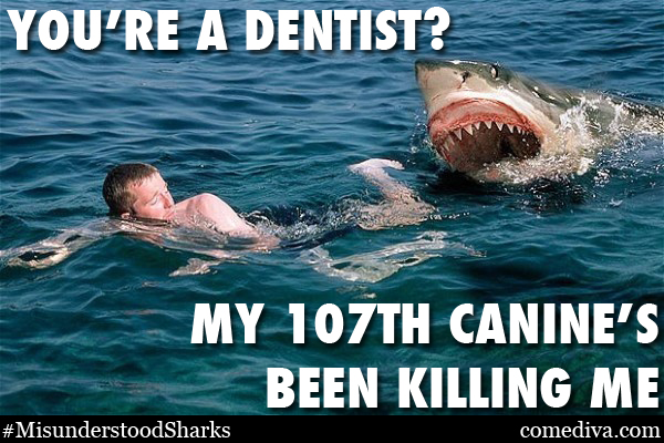 SHARKMEME_dentist