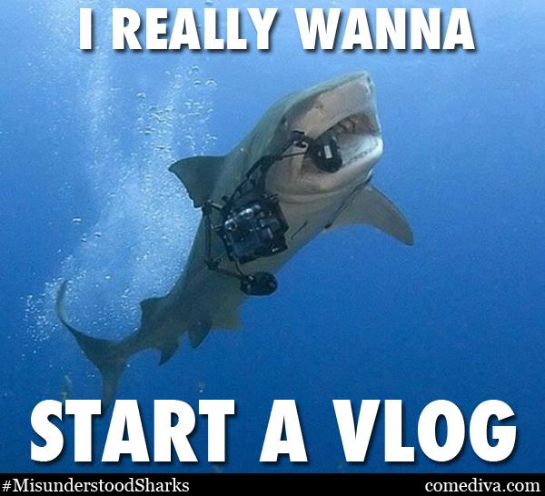 SHARKMEME_vlog