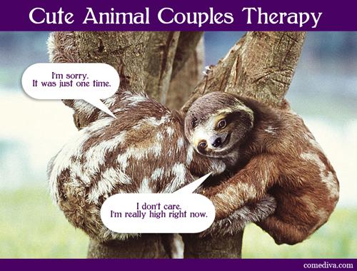 sloths_050412