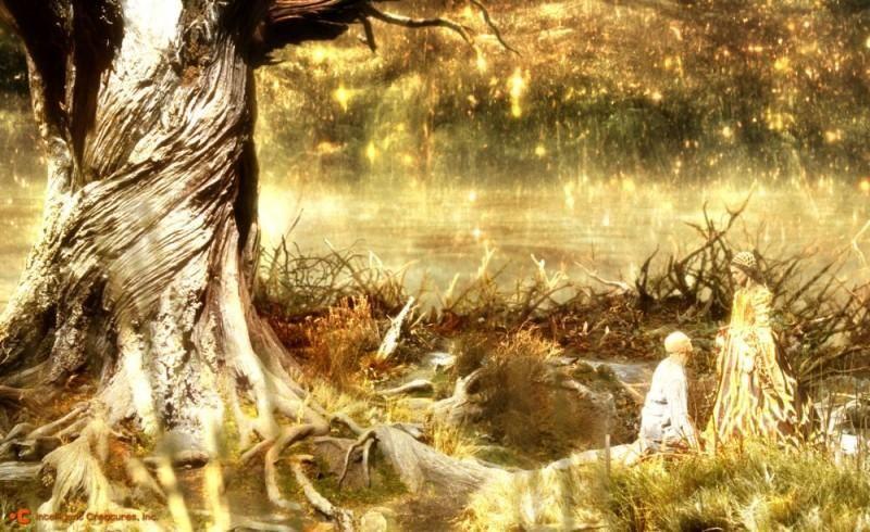 treeoflife4062012