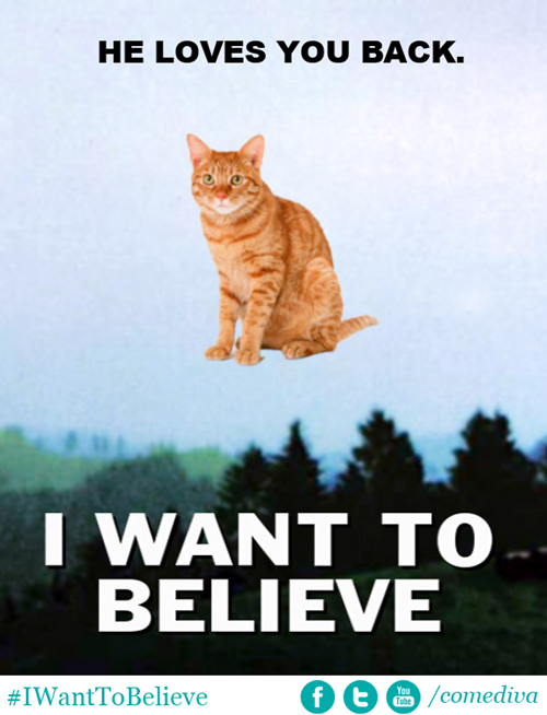 BELIEVEcat