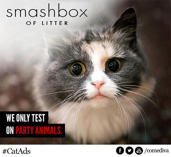 catads_smashbox