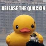 release the quackin duck meme