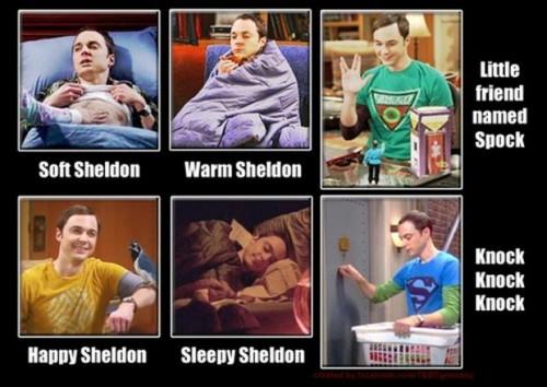 SoftKitty_Sheldon